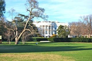 … à la Maison Blanche (photo Dahmane Soudani)