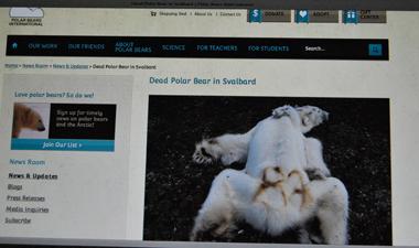 Le roi du cercle polaire mort de faim et d'épuisement (photo d'écran PBI)