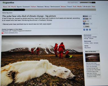 L'île de Svalbard pourrait devenir le premier cimetière du mammifère à la fourrure blanche (photo d'écran The Guardian-DR)