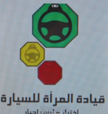 Le portail des militantes (photo d'écran DR)