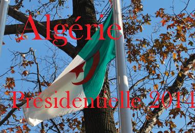 ONU-drapeau-Algérie-élct.-maghnord-DS-2