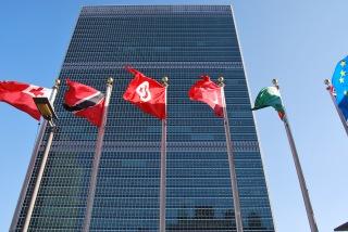 Le Conseil de sécurité avoue son impuissance (photo Dahmane Soudani)